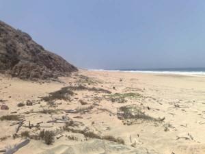 San Cristobal Beach Front Pic